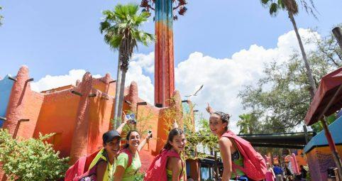#6 Busch Gardens