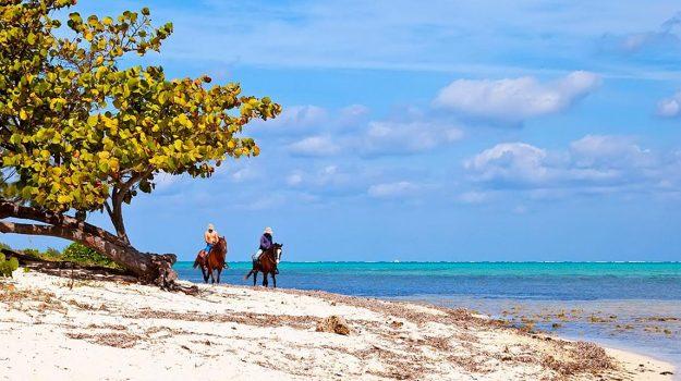 Miami & Islas Caimán
