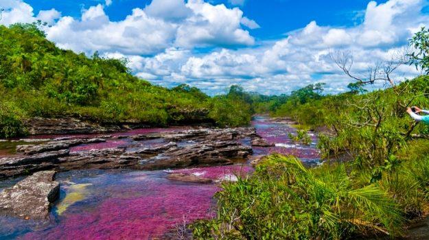 Caño cristales: el increíble arcoiris líquido