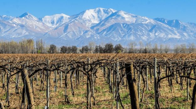 Mendoza - Full Experience